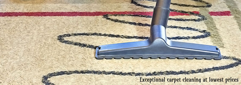 Spotless And Germ-Free Cleaning Pelton