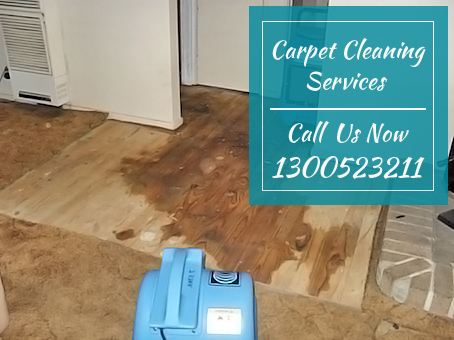 Carpet Mould Removal Round Corner