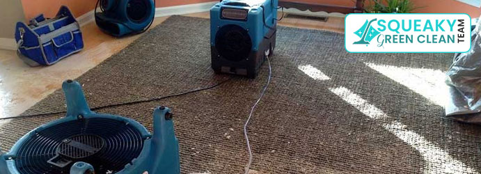 Carpet Flood Water Damage Restoration Waterloo