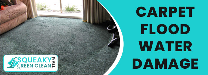 Carpet  Flood Water Damage Waterfall