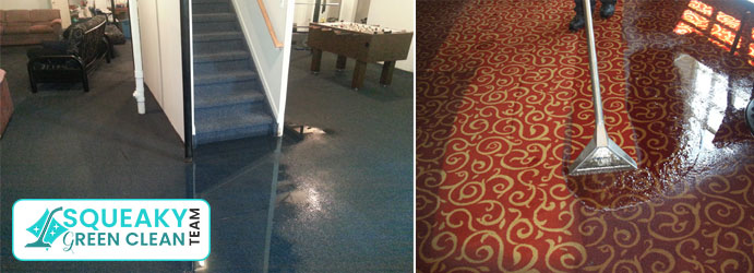Carpet Water Extraction Bankstown Square